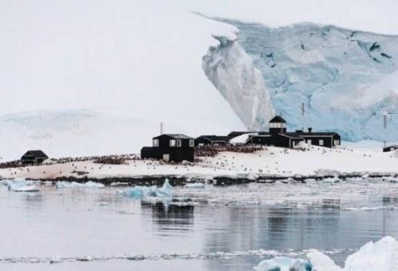 Пал последний бастион: коронавирус добрался и до Антарктики