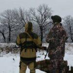 ЛНР опровергла сообщения об обстреле силовиками жилых кварталов