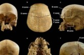 Археологи раскрыли тайну черепа из итальянской пещеры