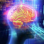 Ученые подтвердили связь между уровнем интеллекта и активностью мозга