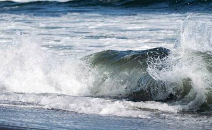 В Тихом океане произошло землетрясение магнитудой 5,5