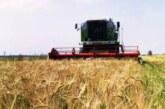 В России ожидают богатый урожай: но цены на продовольствие будут расти