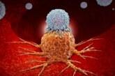 Создан новый метод лечения рака