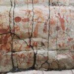 В тропиках Колумбии обнаружили загадочные наскальные рисунки