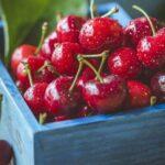 Россельхознадзор предупредил плодоводческие хозяйства об опасном насекомом