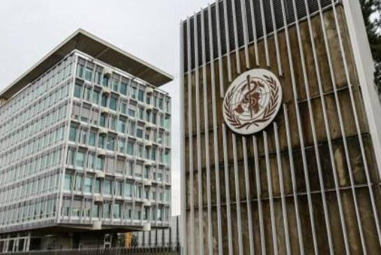 Эксперт ВОЗ назвал условие для введения иммунных паспортов