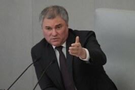 Володин: депутаты чаще всего заражаются COVID-19, работая в регионах